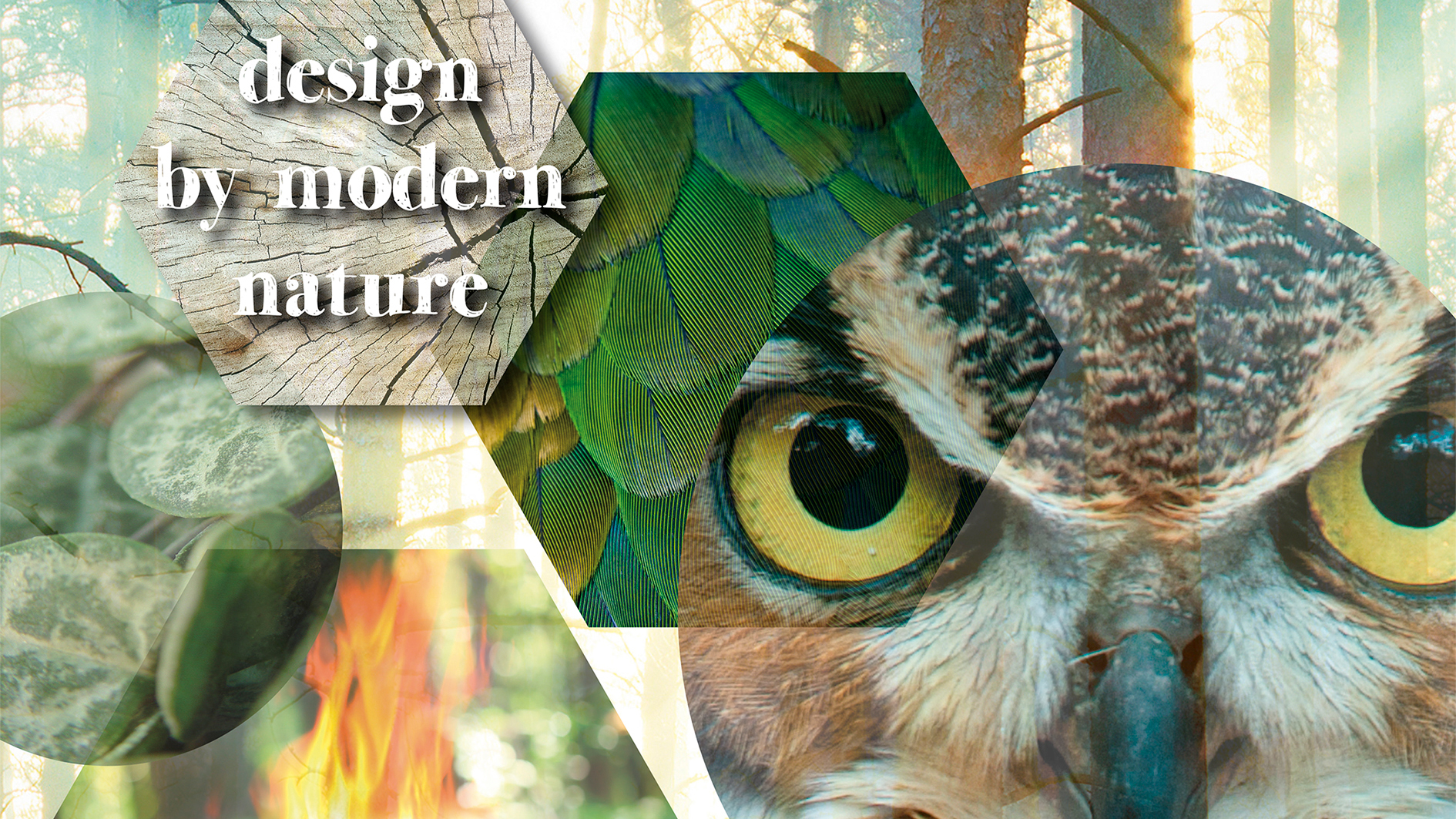 "2016: ""design by modern nature"" by 2dezign"